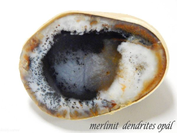 """Merlinit"" dendrites opál"