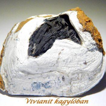Vivianit - Ásványlexikon - Kristálycentrum